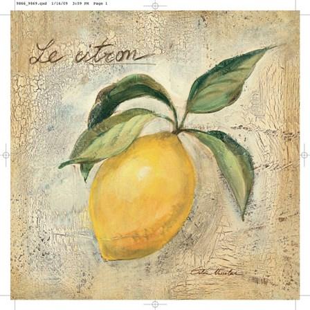Le Citron by Silvia Vassileva art print
