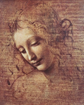 Head of a Young Woman with Tousled Hair by Leonardo Da Vinci art print
