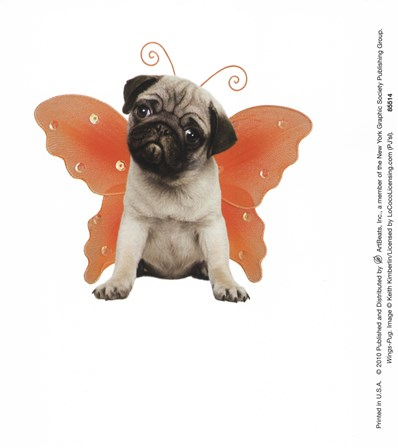 Wings - Pug art print