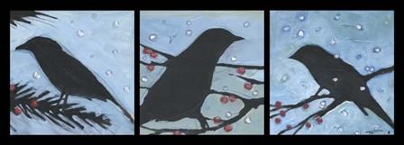 Winter Bird Triptych by Tim Nyberg art print