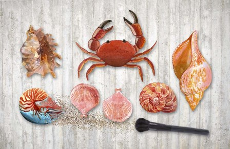 Marine Biology by Tina Lavoie art print